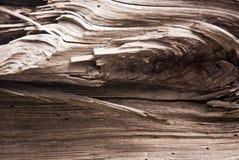 Drewniana tekstura Fotografia Royalty Free