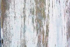 Drewniana tekstura Drewniana tekstura dla projekta i dekoraci Zdjęcia Royalty Free