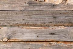 Drewniana tekstura Drewniana tekstura dla projekta i dekoraci parquet Pod?ogowa deska obraz royalty free