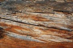 Drewniana tekstura, drewniany tło Obrazy Royalty Free