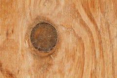 Drewniana tekstura i gnarl dla wzoru i tła Fotografia Stock