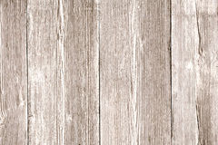Drewniana tekstura, Lekki Drewniany Textured tło, adra deski Fotografia Stock