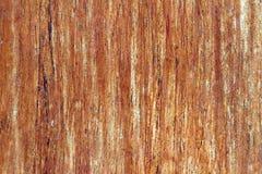 Drewniana tekstura lub tło Zdjęcia Royalty Free