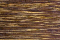 Drewniana tekstura, orzech włoski Obraz Stock