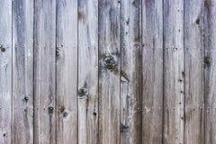 Drewniana tekstura Powierzchnia szary naturalny drewniany tło Obrazy Stock