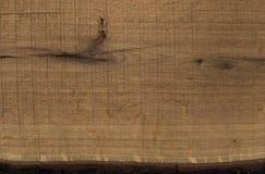 Drewniana tekstura Rżnięty drzewo Fotografia Stock