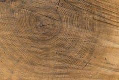 Drewniana tekstura Rżnięty drzewo Zdjęcia Royalty Free
