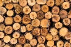 Drewniana tekstura rżnięty drzewo w sklepie Fotografia Stock