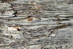 Drewniana tekstura tło starzy panel, tekstura Obrazy Royalty Free