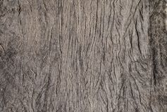Drewniana tekstura tapeta - tło - tekstura - Obraz Royalty Free
