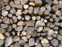 Drewniana tekstura W Obrazy Stock