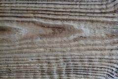 Drewniana tekstura w antykwarskim spojrzeniu Zdjęcia Royalty Free