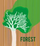 Drewniana tekstura z drzewo kartą lub kartą - ilustracja dla pokrywy, grafika Obraz Royalty Free