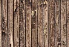 Drewniana tekstura z naturalnymi wzorami Zdjęcie Stock