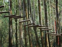 Drewniana wisząca drabina zdjęcie royalty free