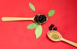 Drewniane łyżki z pieprzu i wysuszonych jagod odgórnym widokiem obraz royalty free