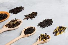 Drewniane łyżki z różnymi herbacianymi liśćmi na popielatym betonowym backgro Fotografia Royalty Free