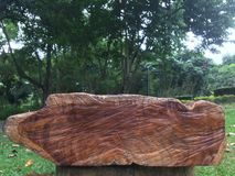 Drewniane ławki w ogródzie fotografia stock