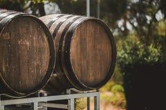 Drewniane baryłki z czerwieni i wihte winem dla kosztować na winnicy Odbitkowa przestrzeń dla teksta i projekta Obraz Royalty Free