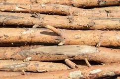 Drewniane bele obraz stock