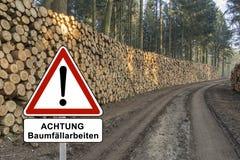 Drewniane bele niemiec znak - przekład: - bagażniki drzewa cięcie I Brogujący - Uwagi Drzewny Felling Zdjęcia Royalty Free