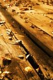 Drewniane bele z liśćmi, jesień abstrakta tło Fotografia Royalty Free