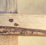 Drewniane deski Fotografia Royalty Free