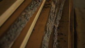 Drewniane deski kłamają na podłodze, szalunek lub tarcica jest w meblarskim warsztacie zbiory wideo