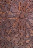 Drewniane gwiazdy zdjęcie stock