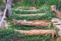 Drewniane kroczenie bele Fotografia Royalty Free