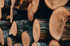 Drewniane naturalne cięcie bele zdjęcia royalty free