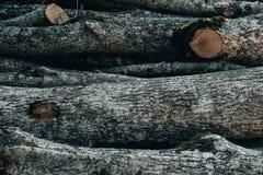 Drewniane naturalne cięcie bele obraz stock