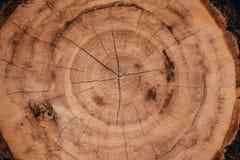 Drewniane naturalne cięcie bele zdjęcie stock