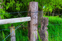 Drewniane ogrodzenie poczta Fotografia Stock
