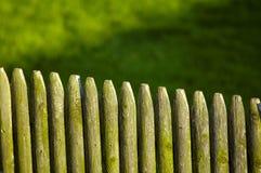 drewniane płotu zdjęcie stock