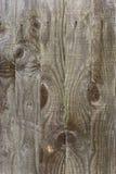 drewniane płotu Obraz Stock