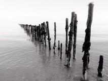 Drewniane poczta w morzu Fotografia Stock