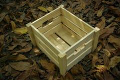 drewniane pudełko Obraz Royalty Free