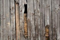 drewniane tło Zdjęcia Royalty Free