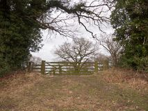 drewnianego bramy ogrodzenia drzewnego kraju pola intymny gospodarstwo rolne zdjęcie stock