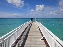 Drewnianego mosta przejście w Jamajka Zdjęcia Royalty Free