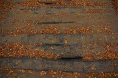 Drewnianego mosta tło obraz royalty free