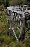 Drewnianego mostu struktura w forrest przy Humpridge śladem w Southland w Południowej wyspie Nowa Zelandia zdjęcia stock