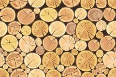 drewnianego notuje Brown barkentyna powala? suchy drewno royalty ilustracja