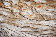 Drewnianego pudełka tła/tekstura s Fotografia Stock