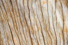 Drewnianego pudełka tła/tekstura s Zdjęcia Stock