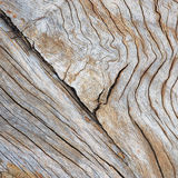 Drewnianego pudełka tła/tekstura s Obraz Royalty Free