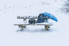 Drewnianej ławki krzesło w parka całkowicie pokrywie z śniegiem po miecielicy podczas zim bożych narodzeń wakacji, a Fotografia Royalty Free