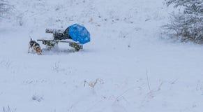 Drewnianej ławki krzesło w parka całkowicie pokrywie z śniegiem po miecielicy podczas zim bożych narodzeń wakacji, a Zdjęcie Stock
