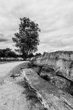 Drewnianej ławki złej pogody czarny i biały niebo zdjęcie stock